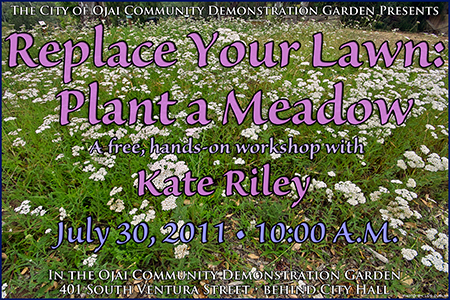 Plant a Meadow workshop2011web.jpg